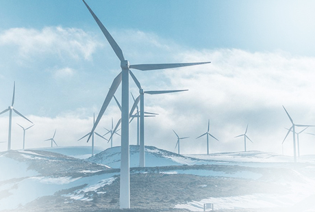 Gold standard for sustainability from Ecovadis
